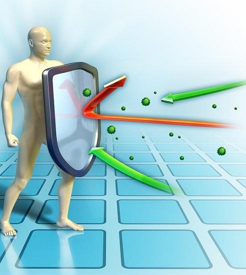 Difese immunitarie basse? Fatti aiutare da queste 5 erbe