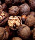 Mangiare noci allunga la vita e annulla gli effetti del junk food