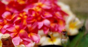 Sette segreti di bellezza naturale delle donne Thai