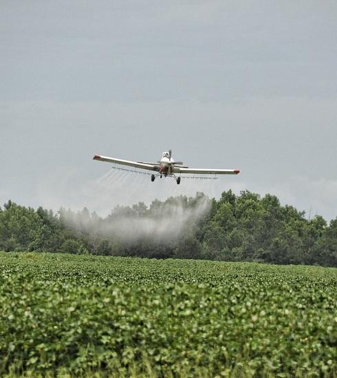 Vogliono debellare il virus zika, ma nel farlo uccidono milioni di api. Succede in Sud Carolina