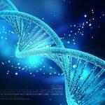 """Leucemia mieloide: """"DNA non umano in un caso su due"""""""