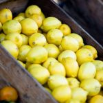 Allarme limoni turchi. Quinto carico contaminato respinto alla frontiera UE