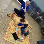 Pet therapy: lo speciale legame tra Kainoa, bimbo autistico, e il suo cane Tornado