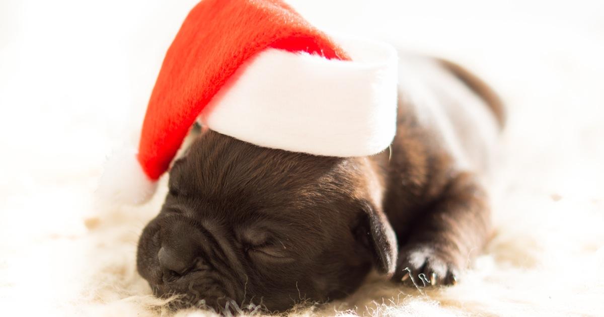 Come ti riciclo il natale 3 addobbi natalizi fai da te for Oggetti natalizi fai da te