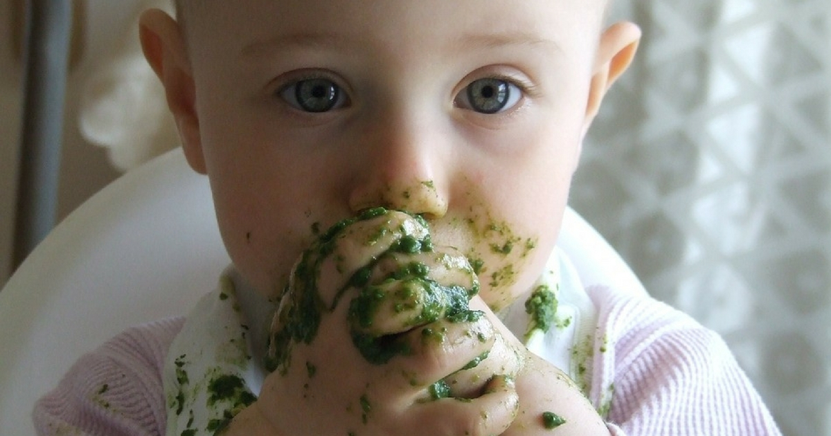 Polemica sul baby food: