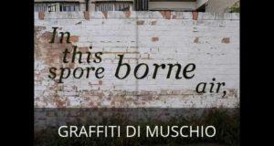 Come preparare una 'vernice' per graffiti con i muschi