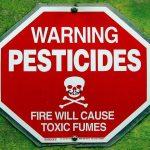 Contaminazione alimentare: l'allarme di Legambiente sui pesticidi