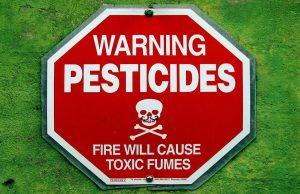 Contaminazione alimentare: pesticidi, l'allarme di Legambiente
