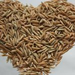 Arsenico inorganico: cucinare male il riso danneggia la salute