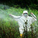 """Glyphosate, l'Europa si piega agli interessi delle lobby: """"Non è cancerogeno"""""""