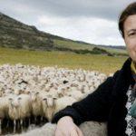 Storie di successo: l'imprenditrice sarda e le sue case ecologiche fatte di scarti