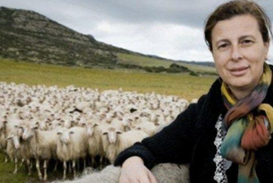 Le case ecologiche (e innovative) di Daniela Ducato