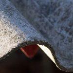 Casale Monferrato: la fabbrica Eternit non fa più crescere alberi verdi