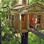 Case sugli alberi: 5 località (in Italia) per un viaggio da sogno