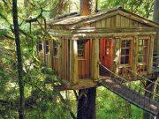 Case sugli alberi: tutte le località in Italia
