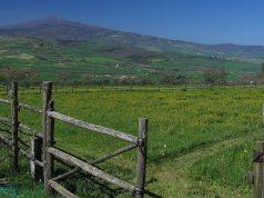 Centrali Geotermiche sul monte Amiata: rischio mercurio?