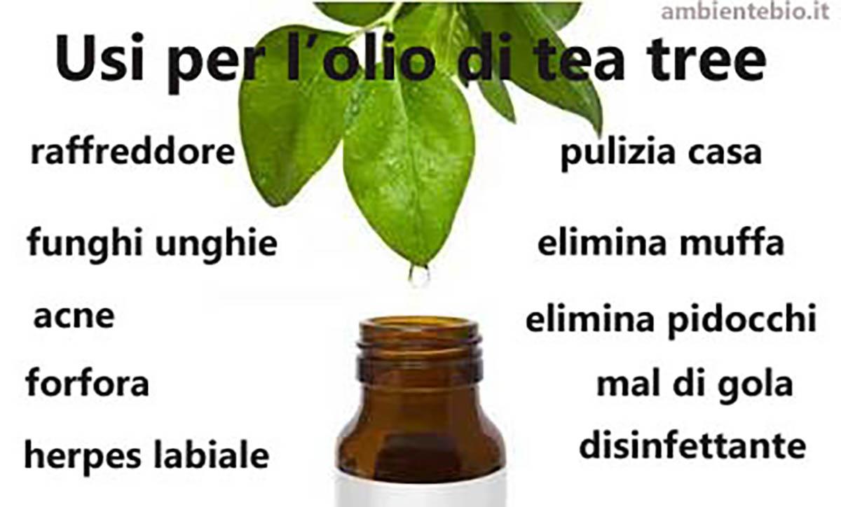 olio di tea tree lavatrice