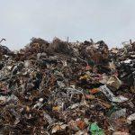Tassa sui rifiuti a Milano: sconti a chi fa donazioni alimentari
