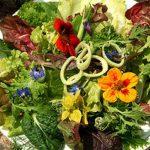 """Innovative ricette con fiori per piatti """"profumati"""""""