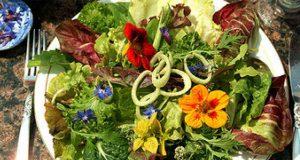 ricette con fiori