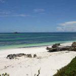 62 meraviglie della natura minacciate dal riscaldamento globale: l'allarme dalla COP 23