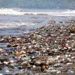 Le microplastiche uccidono i nostri mari. Ma la politica blocca il divieto