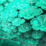 Bioluminescenza: arrivano le piante che si illuminano come lampadine