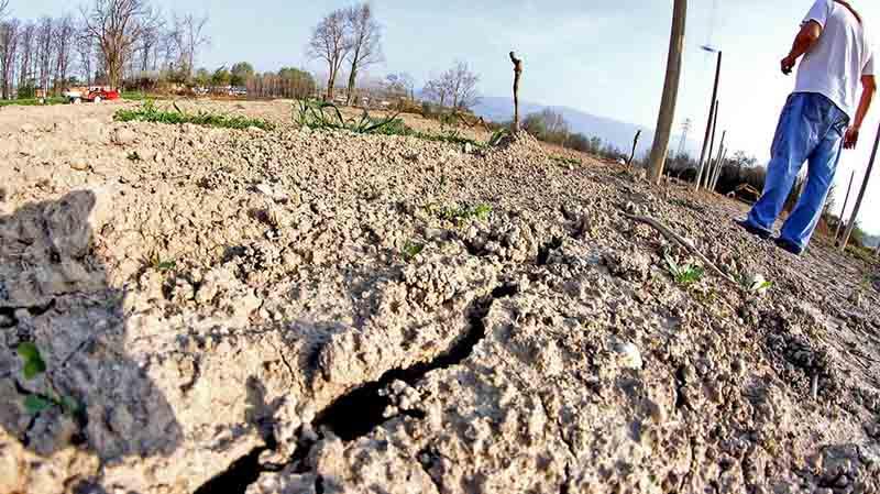 siccità italia 2019 agricoltura