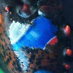 """Pescata aragosta con logo della Pepsi """"tatuato"""" sulla chela. E di cosa ci stupiamo?"""