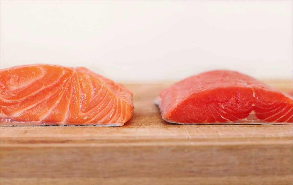 salmone biologico e convenzionale