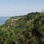 Scopri il Parco Naturale del Monte San Bartolo, la magica riserva delle Marche