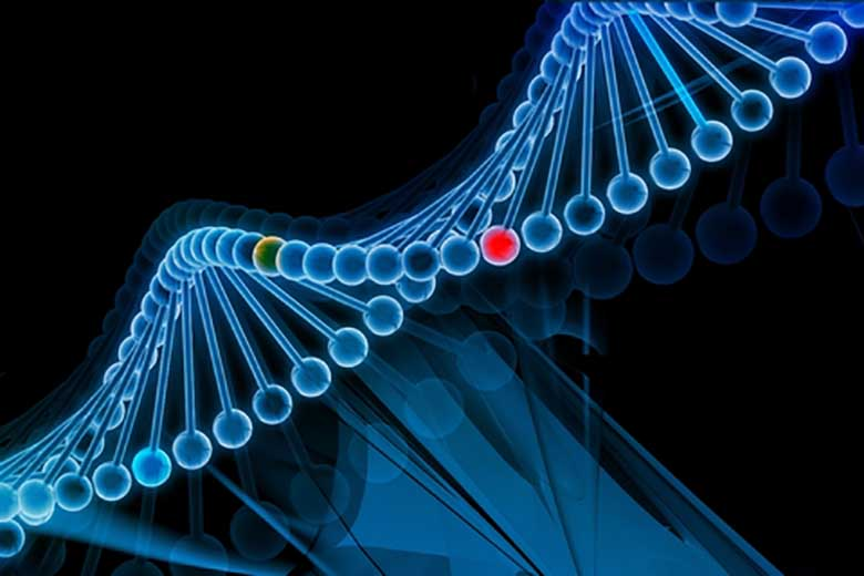 cancro scoperta genetica