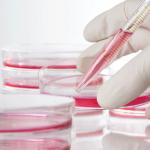 Lomustina, oggi il farmaco anticancro costa il 1400% rispetto al 2013