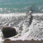 Sostanze cancerogene nello Ionio: vengono da impianto nucleare di Rotondella