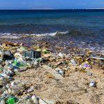 Creato per caso enzima killer capace di mangiare plastica: salverà i mari
