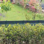 Bonus verde 2018: sgravi Irpef del 36% per chi sistema giardini e terrazzi