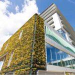 Un enorme muro verde antinquinamento difende un municipio olandese