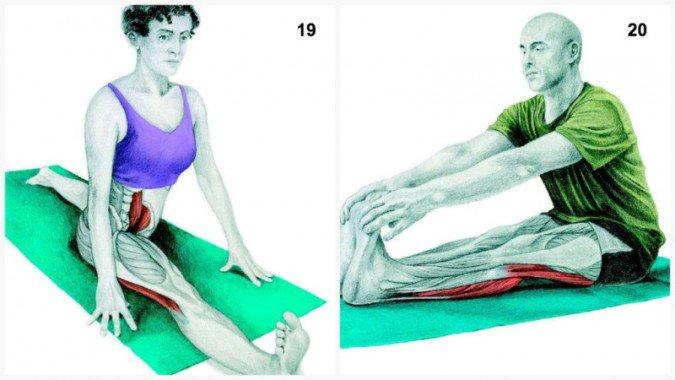 Stiramenti muscolari:allungamenti del muscolo spaccato frontale
