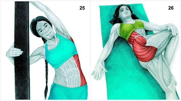 Stiramenti muscolari:allungamenti muscolari laterali