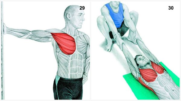 Stiramenti muscolari:stiramenti muscolari del torace