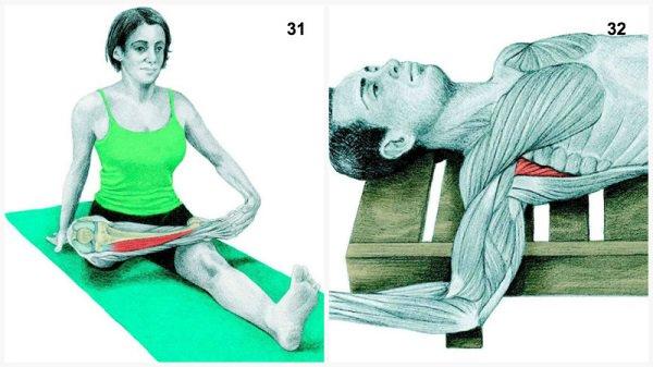 Stiramenti muscolari:il muscolo allunga la spalla della spina