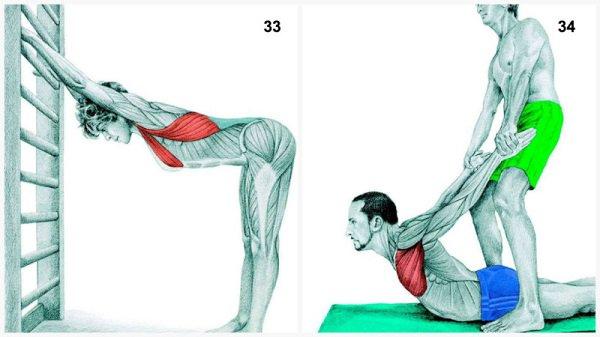 Stiramenti muscolari:allungamenti dei muscoli pettorali