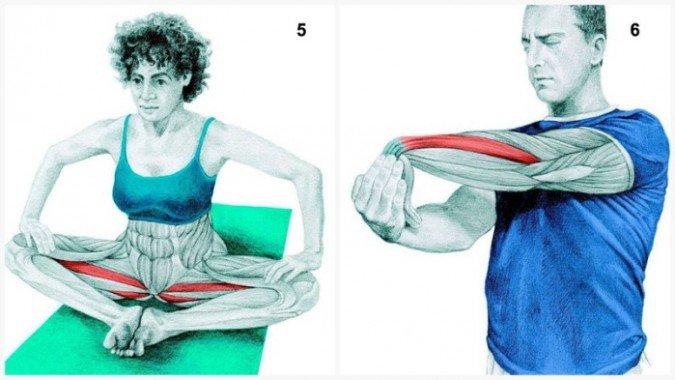 Stiramenti muscolari:il muscolo allunga la farfalla