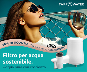 Tappwater