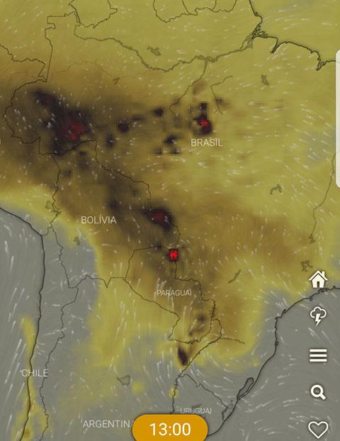 brasile incendi deforestazione