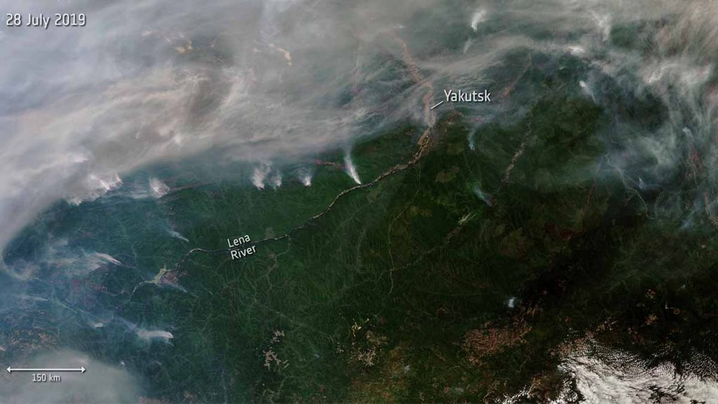 incendi in siberia zone