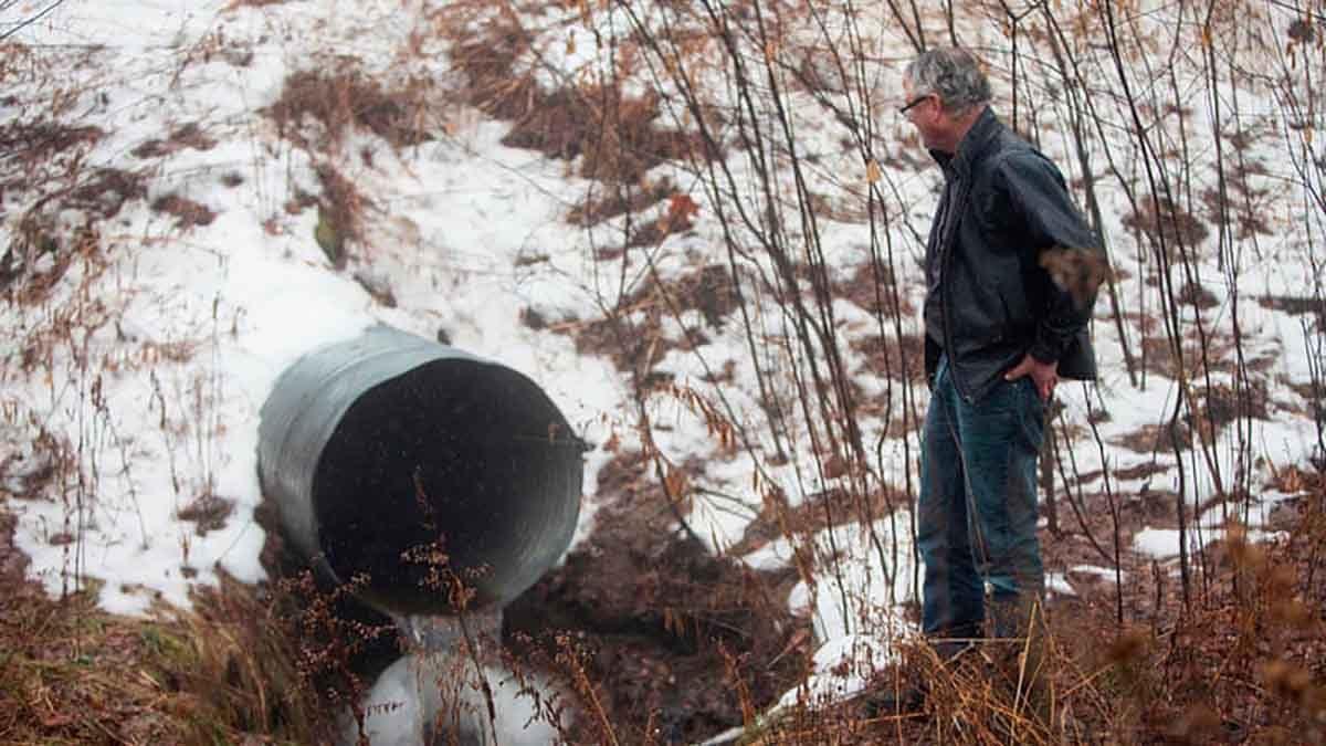nestlè privatizzazione acqua