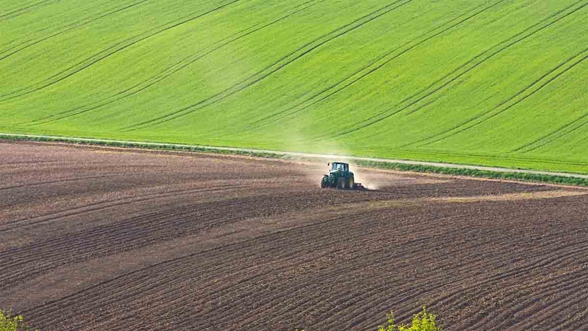 filiera agroalimentare agricoltura