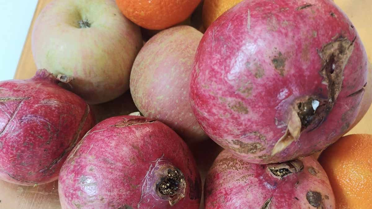 spesa di novembre melograno mela arancia