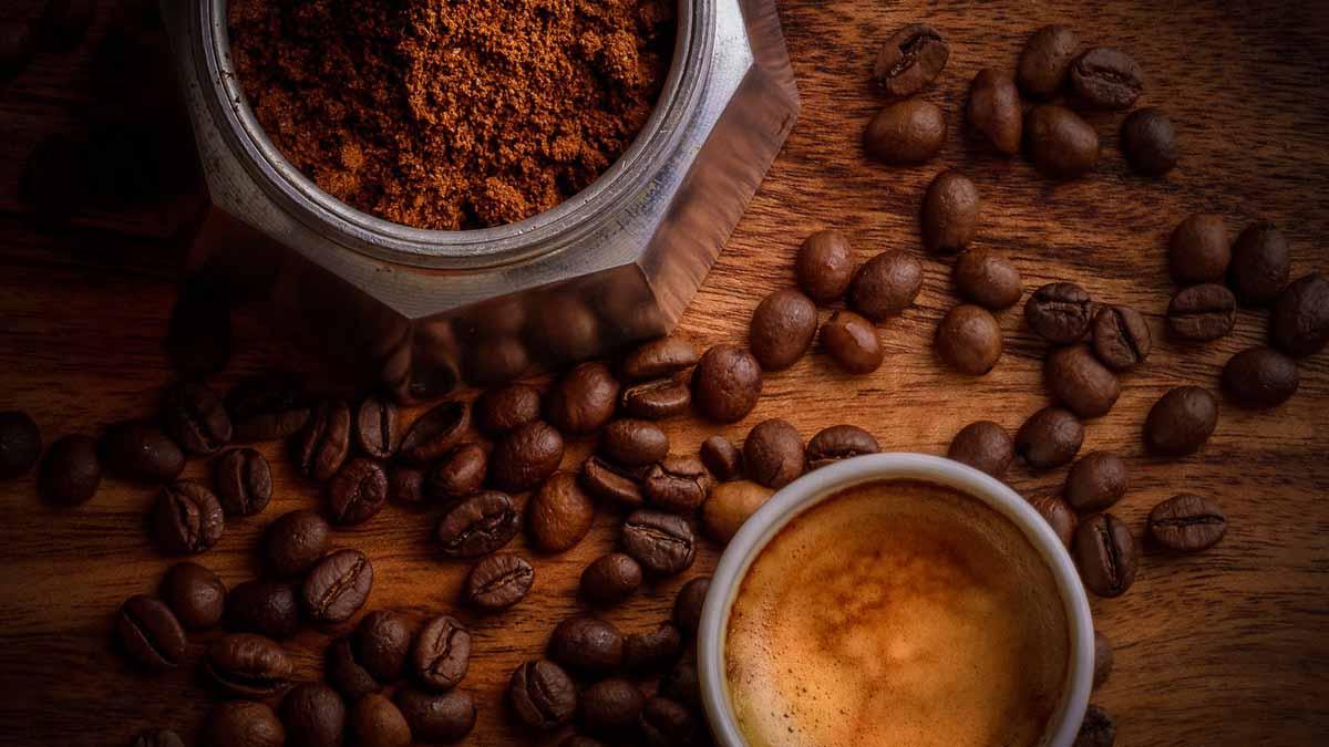 caffè obesità metabolismo grasso bruno